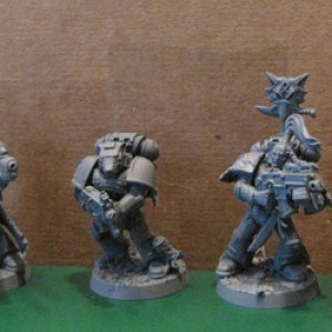 Space Wolves primed