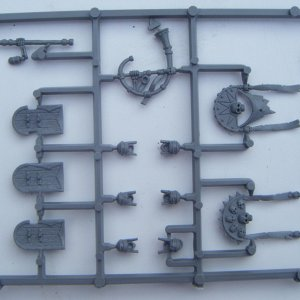 Tomb Kings Shield and Command sprue. back view.