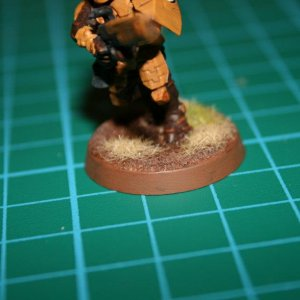 Tau Fire Warrior Based