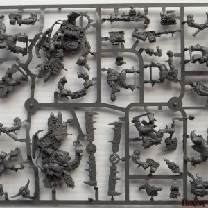 AoBR sprue C [Front]