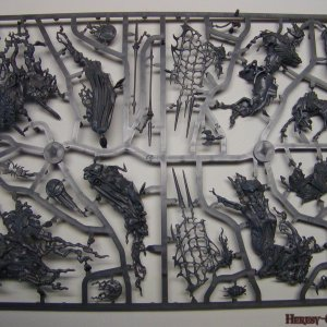Vampire Counts Coven Throne Sprue 2 [Front]