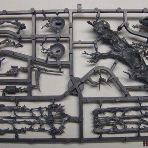 Vampire Counts Coven Throne Sprue 3 [Back]