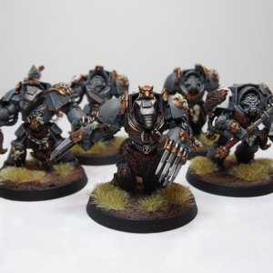 Wolf Guard Termies