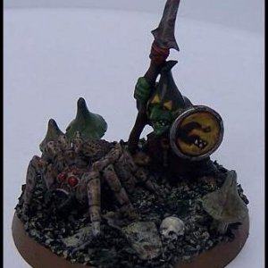 Night Goblin Sentry