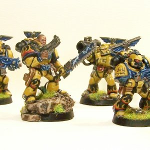 LoD/ Imperial Fist Squad