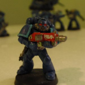 adjusted bolter