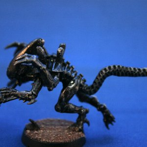 one Alien Genestealer sideview