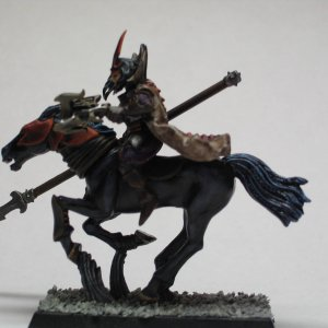 Dark Rider converted 1in PIP