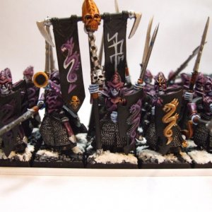 Dark Elf  Warriors.