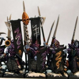 Dark Elf Warriors with Dreadlord