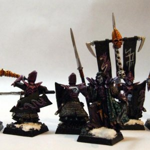 Dark Elf Warrior Command with Dreadlord and Assassin